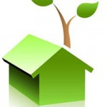 Top 5 Ways to Green Your Home